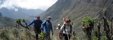 Best hiking safari Uganda